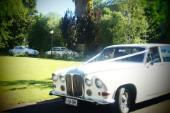 classic-cars-jaguar-daimler-15